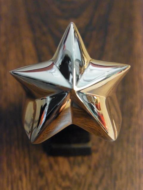 Rock Star RingR5-334